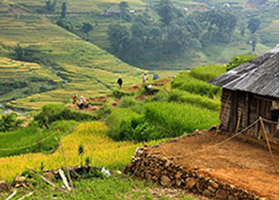 EXPERIENCE SAPA HOMESTAY TOUR – 03 DAYS